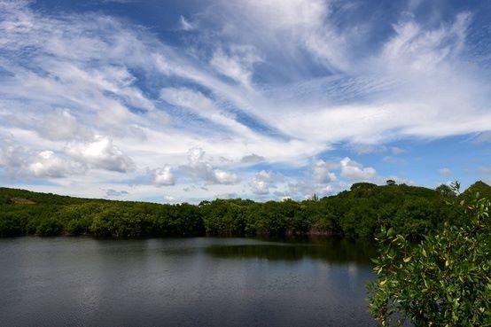 Colombia-designa-6º-Sitio-Ramsar-zona-transicional-Orinoco-Amazonas